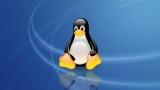 Пошук по вмісту файлів в Linux: можливі варіанти розв'язання проблеми