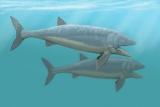 Вчені з'ясували швидкість плавання древніх риб